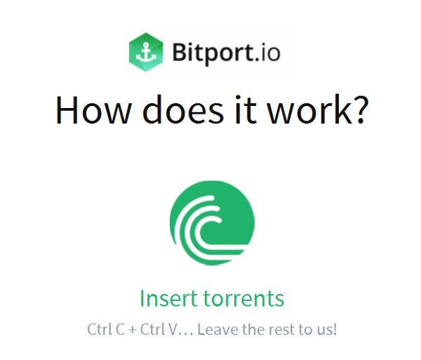 bitport web torrent